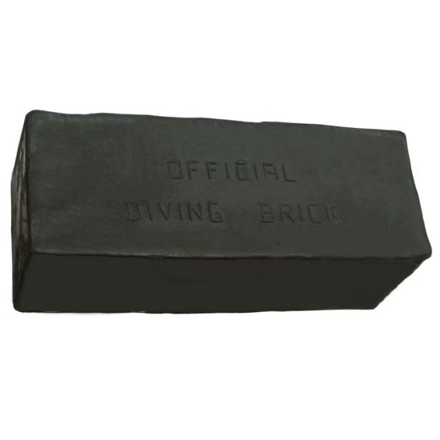 Rise Aquatics Dive Brick