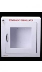 Small Wall Mounted AED Cabinet